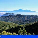 El Cabildo de La Gomera culmina un centenar de actuaciones para la protección del patrimonio natural