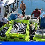 Aprueban una ayuda de 70.000 euros  para las cofradías de pescadores de Tenerife