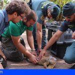 Oasis Park Fuerteventura felicita al SEPRONA por sus 30 años de defensa de la naturaleza en canarias