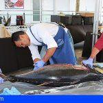 'Sensaciones Más que Mar' pone en valor la actividad pesquera y de la lonja en Los Abrigos