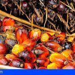 Nestlé se compromete a utilizar 100% aceite de palma sostenible y certificada en el año 2023