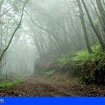 La biodiversidad de La Gomera, lujo y responsabilidad