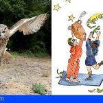 Museos de Tenerife organiza la próxima semana dos acampadas nocturnas infantiles
