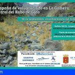 El Cabildo de La Gomera realiza acciones para el control del rabo de gato en la Isla