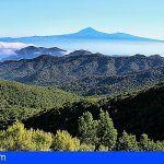 Darias «La Gomera es un ejemplo europeo de conservación de ecosistemas»