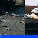Tenerife | Casi un centenar de voluntarios participan en la iniciativa de concienciación ambiental 'Respect the mountains'