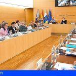 Los municipios se suman a la reivindicación para que AENA construya en Tenerife Sur una nueva terminal