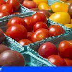 UGT califica de 'hipócrita' la actitud de CCOO con los trabajadores del Empaquetado del Tomate en 10 años