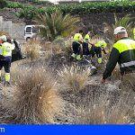 Tenerife | Retiran 33 toneladas de residuos vegetales de especies exóticas invasoras en octubre