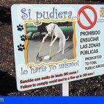 ¿Por qué es importante recoger las heces de perros?