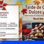 La Fiesta de Otoño regresa a Arona con el esplendor de Castañas, Dulces y Vinos