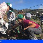 La Gomera apuesta por la recuperación de los bosques termófilos en la celebración del Día Insular del Árbol