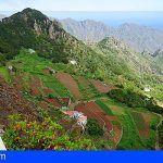 Tenerife recibe 14,2 millones de euros para la modernización de 707 explotaciones agrícolas y ganaderas
