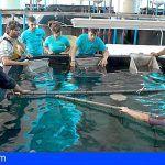 ECOAQUA organiza un ciclo de mini-conferencias sobre el sector de la industria acuícola