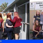 El voluntariado del Centro Integral de Acogida de Animales de Adeje ya está operativo