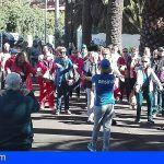 El Cabildo de Tenerife pone en marcha los circuitos cardiosaludables para los mayores de la Isla