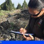 Tenerife | El Centro de Investigaciones Científicas mejoran el control de las especies vegetales invasoras