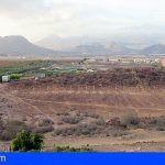 Investigan a dos personas por sustraer 120 Kg de aguacates de una finca en El Fraile