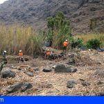 La Gomera avanza en la retirada de residuos vegetales con el proyecto de mejoras medioambientales