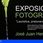 El fotógrafo aronero, José Juan Hernández, expone en Los Cristianos `Laurisilva, prisionera del alisio´