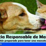 San Miguel pone en marcha una campaña sobre la tenencia responsable de mascotas