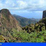 Implantarán en La Gomera el Ciclo Superior de Gestión Forestal y Medio Natural