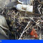 """Cs """"hay que tomar medidas ya, para evitar imágenes como la de la playa El Porís"""""""