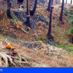 La Gomera impulsa la creación de empleo a través de un nuevo proyecto para la protección del medioambiente