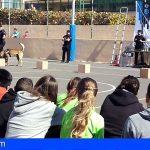 La Policía Autonómica localiza a 17 jóvenes, de entre 13 y 18 años, en Gran Canaria y Tenerife