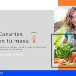 Tenerife | La empresa especializada en restauración colectiva «Albie» ofrecerá gastronomía local e internacional