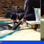 Loro Parque permite estudiar el efecto de la contaminación marina en la fertilidad de las orcas