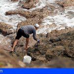 Agentes de Inspección Pesquera incautan 7,8 kilos de lapas en Gran Canaria