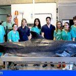 La autopsia veterinaria en Canarias, de vital importancia para la salud de todos