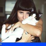 Veterinarios canarios se forman en medicina felina con MSD Animal Health