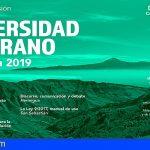 La Gomera   La Universidad de Verano oferta cuatro cursos