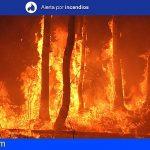 Alerta por Riesgo de Incendios Forestales en Gran Canaria a partir de las 09:00 horas del 25 de julio