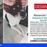 Localizan en Gran Canaria un hombre fallecido acompañado de su perro que cuidaba de él