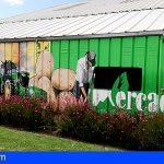 El Mercado del Agricultor de San Miguel de Abona celebra su 19º Aniversario