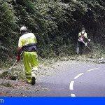 La Gomera renueva el servicio de mantenimiento de carreteras durante un año