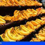 Plátano de Canarias preocupado por la alarma de exportaciones de Guatemala