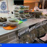 Detenidos los regentes de un Club Cannabico por posible venta de estupefacientes
