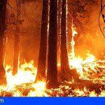La app Welppy puede ayudar a reducir daños humanos y materiales en los incendios