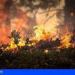 VOX bloquea la Declaración Institucional del Senado por el incendio de Gran Canaria