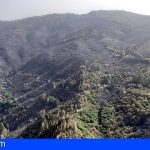 Gran Canaria | Bajan a nivel 1 la situación de emergencia en el incendio forestal de Valleseco