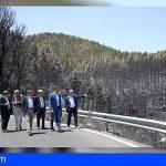 Pedro Sánchez visita las zonas afectadas por el incendio de Valleseco, en Gran Canaria