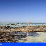 Lanzarote entre los mejores rincones para bucear en España