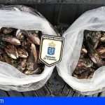 Agentes de Inspección Pesquera incautan 21 kilos de marisco en Fuerteventura