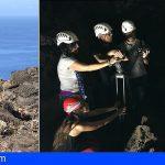 '¡Qué animal!' descubre los seres que habitan en las cuevas de Canarias