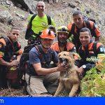 Gran Canaria | Delta Agaete salva a un perro, en un rescate de película