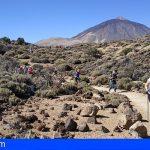'Senderiza-t' llevó de pateo a 25 granadilleros al Parque Nacional del Teide